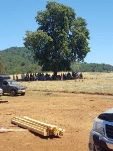 Trawun, terreno de la familia Catrillanca situado en Temucuicui. Crédito: Pablo Basadre.